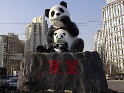 望京熊猫m6米乐投注网站